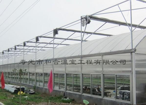 圆拱型连栋温室